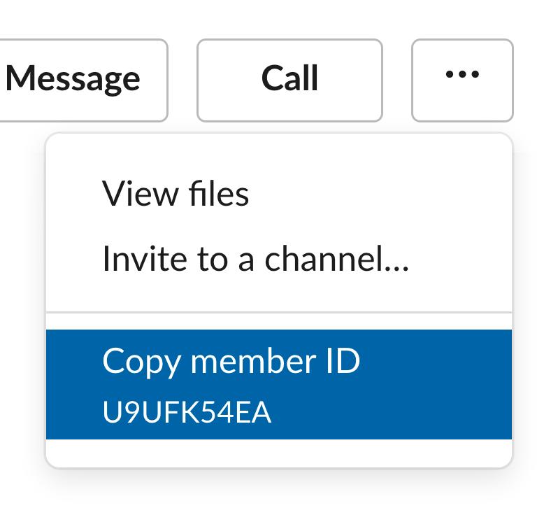 Menu showing user ID in Slack profile